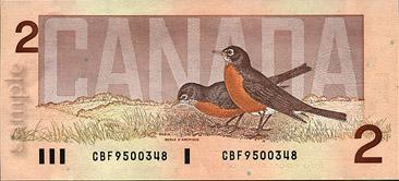 условия получения кредита в альянс банке